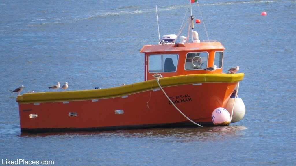 Orange boat in Cascais Bay, Investing in Portugal, Fisheries