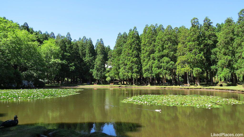 Lagoa das Patas, Ilha da Terceira, Island, Açores, com grandes árvores verdes em plano de fundo