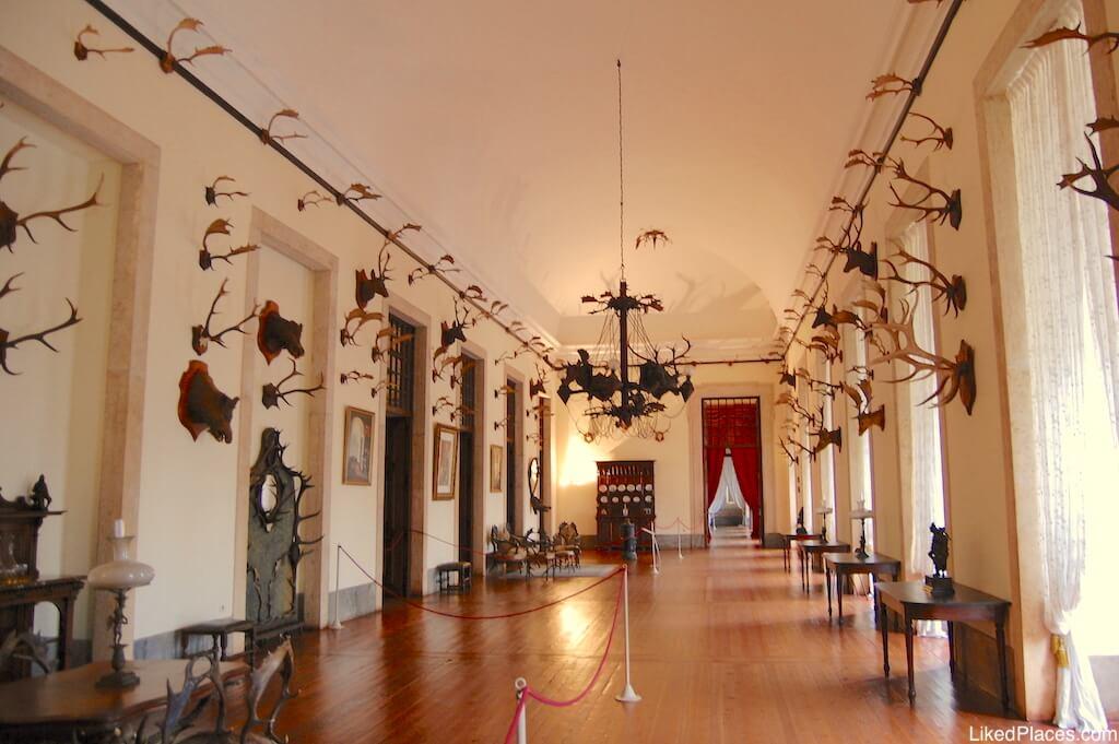 Sala de Caça no Palácio de Mafra Palace Hunting Room