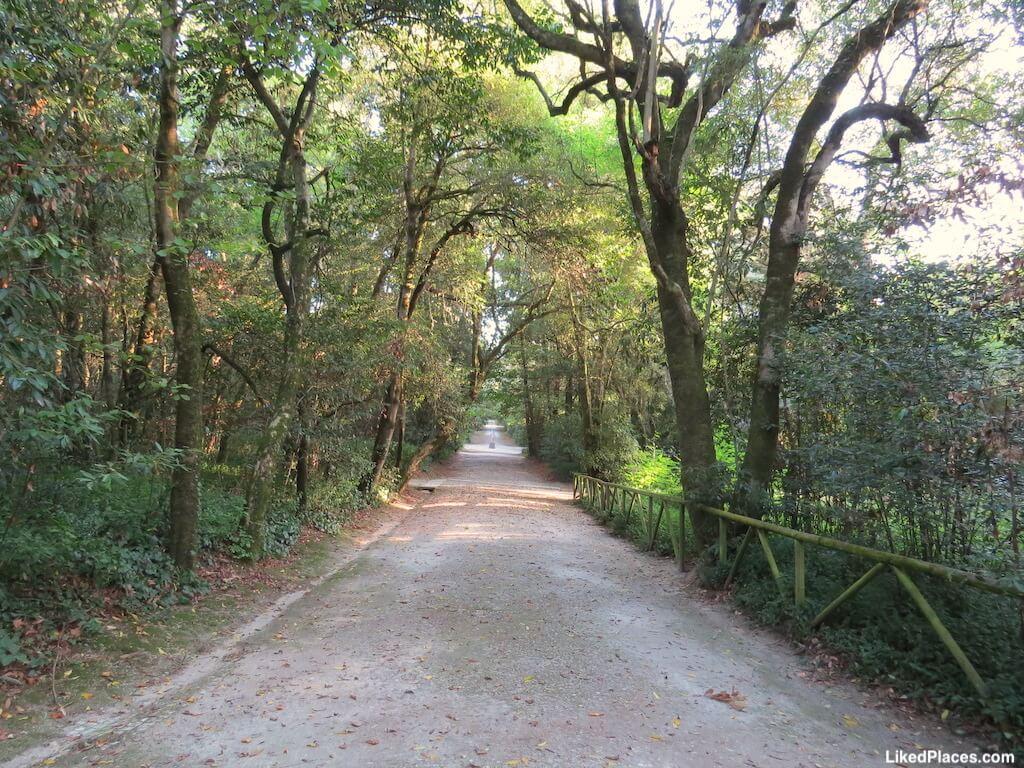 Caminho no Jardim do Cerco Mafra