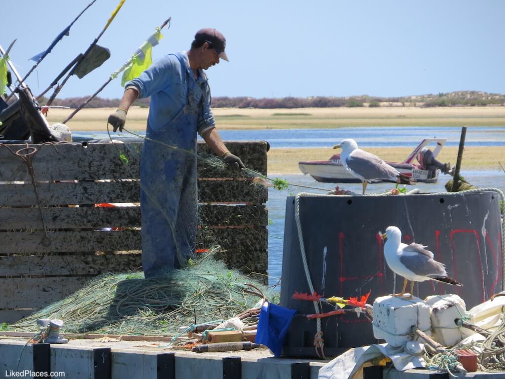 Pescador, Porto de Abrigo da Culatra. Fisherman, Culatra Port of Refuge
