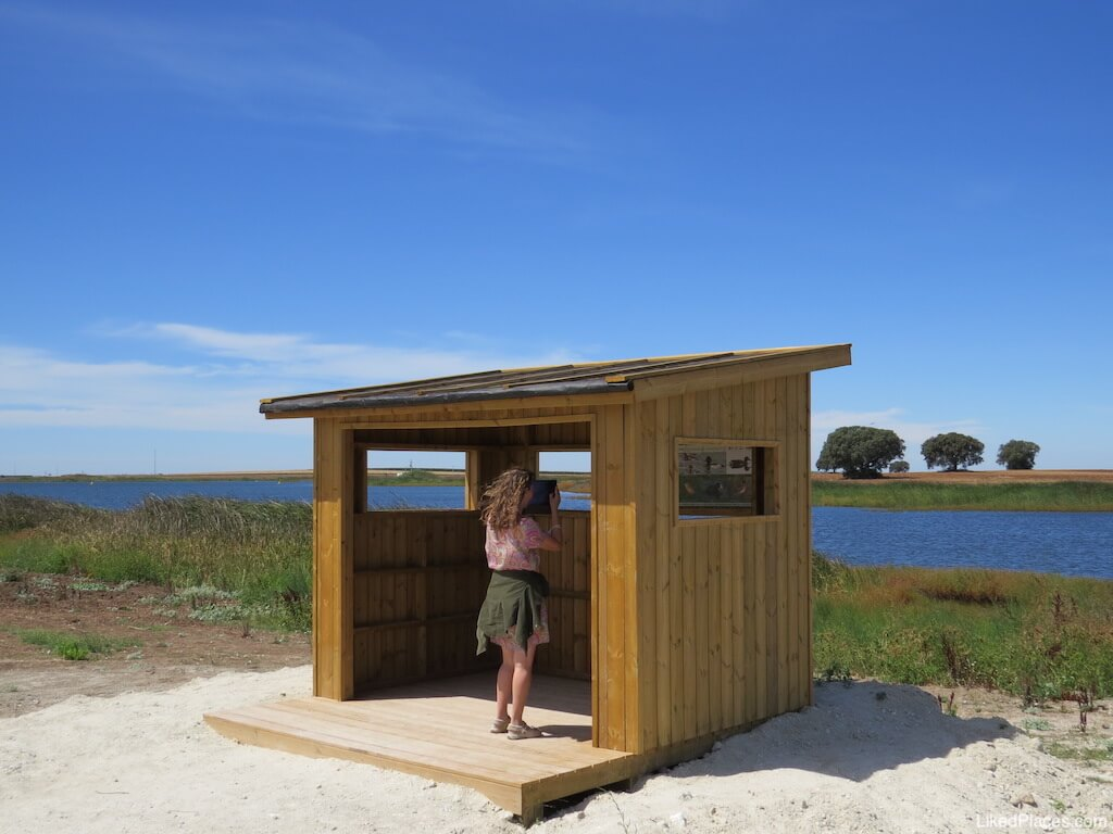 Parque Fluvial 5 reis Praia Beja abrigo observação aves birdwatching