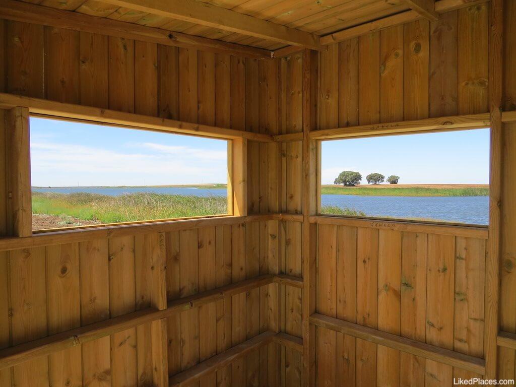 Parque Fluvial 5 reis praia Beja birdwatching abrigo aves