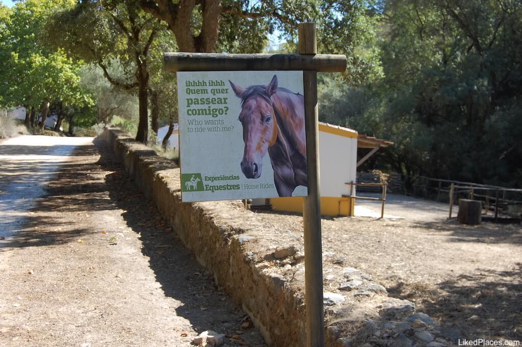 Tapada de Mafra Atividades Equestres