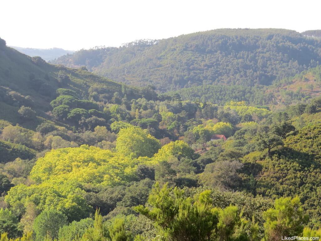 O Celebredo da Tapada de Mafra está localizado num vale verde