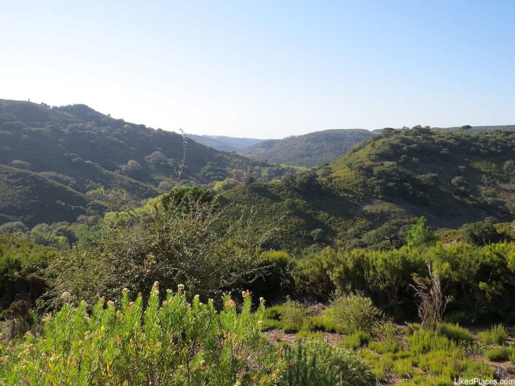 Vale da Tapada de Mafra